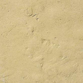 pískovcová - bazénový lem rohový prvek